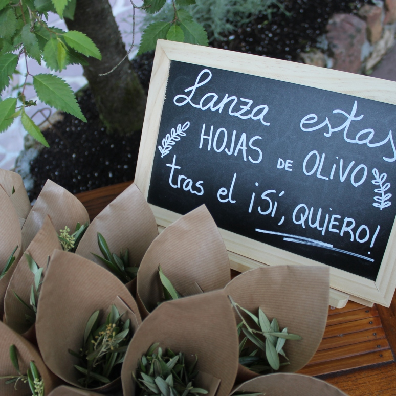 Cucuruchos de olivo